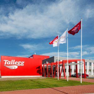 Tallegg-1